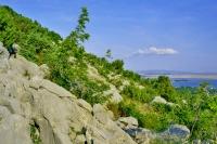 Vicinty of Starigrad