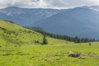 Pohoří Lătoriței