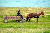 Slovakia (Tajba reservation) & Romania 2008