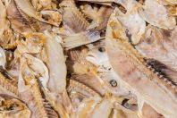 Rybí trh, Bako