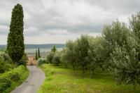 Olivový háj, Nožed