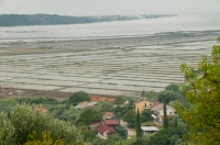 Sečoveljske soline