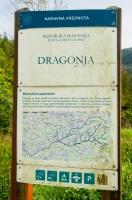 Dragonja