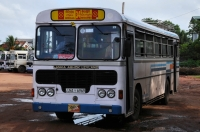 Bus, Negombo