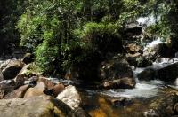 Waterfall, Sinharaja