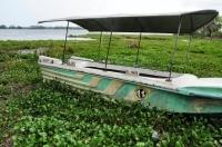 Tissa lake, Tissamaharama