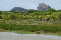 Yala NP, Elephant Rock in the background