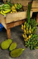 Fruits selling, Ella