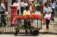 Lychee selling, Kandy