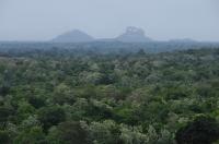 Sigiriya Rock from Dambulla