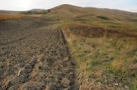 Vpravo habitat V. u. r., vlevo pole...