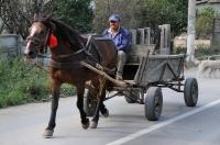 Tradiční doprava