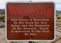Nebezpečný kaktus