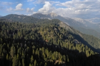 Sierra Nevada, Sequoia NP