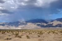 Déšť v poušti
