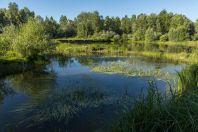 Jezero, Tysaahtelek