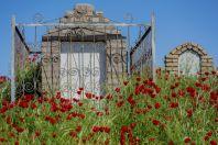 Afrasiyab, Samarkand