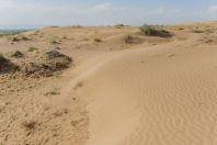 Desert, Dzharkurgan