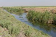 Canal, Dzharkurgan