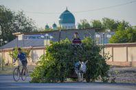 Tashrabat