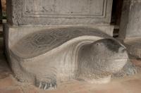 Turtle Steles, Temple of Literature, Hanoi