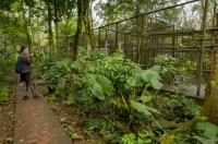 Záchranné centrum primátů, NP Cuc Phuong