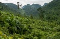 NP Phong Nha-Ke Bang
