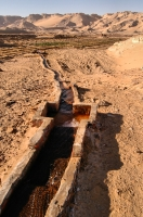 Watering, Dakhla Oasis