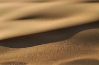 Desert, Dakhla Oasis