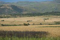 Chráněná oblast Nikolica