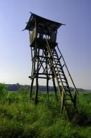 Obedska Bara