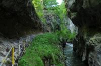 Přírodní zajímavost - kaňon Cheile Corcoaia