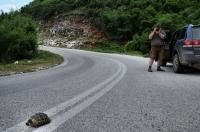 Transbalkan roadtrip 2010