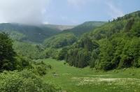 Dolina Bystrička