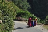 Himalájský život.