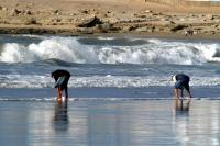 Ocean, El Quatia