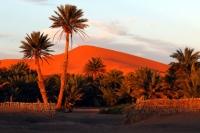 Maroko 2008