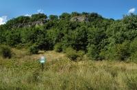 Kamenické lokality plazů