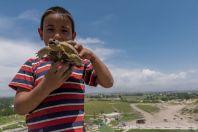 Kluk s želvou, Hisor