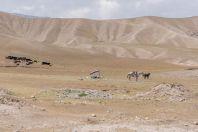 On the way to the south, near Sambuli