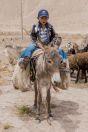 Boy on a donkey, Teshiktosh